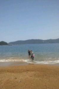 海で遊ぶ参加者の写真