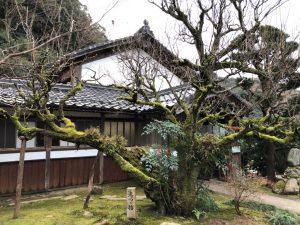禅寺庭風景写真
